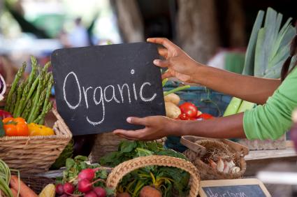 Organic-Hydroponics